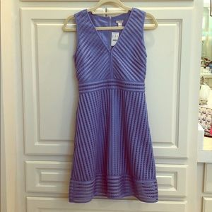 New with tags J Crew dress